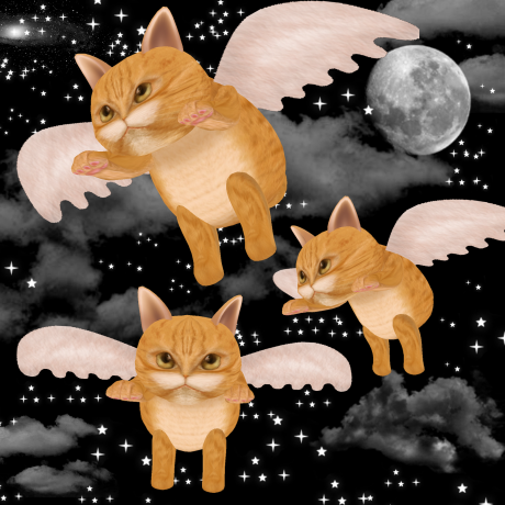 dlab-cats-copy