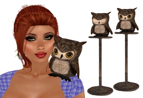 dlab-owls